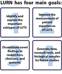 The Symptoms of Lower Urinary Tract Dysfunction Research Network (LURN)