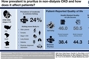 The Experience of Pruritus in CKD